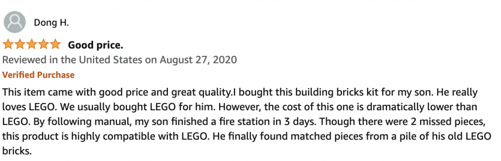 Fake Lego But Probably Real Review
